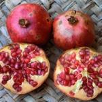 reinhard-pomegranate-fruit-punica-granatu.jpg